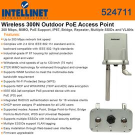 Access Point/ Outdoor 524711